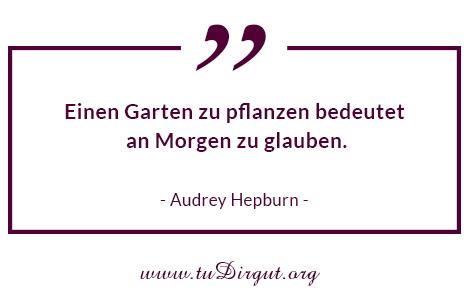 Einen Garten zu pflanzen bedeutet, an ein Morgen zu glauben - Audrey Hepburn